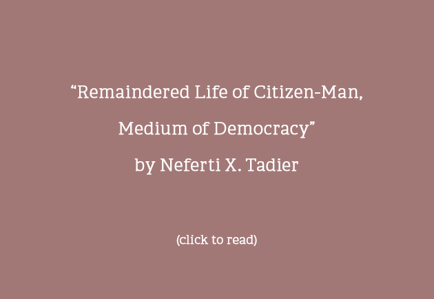 Remaindered Life of Citizen-Man, Medium of Democracy